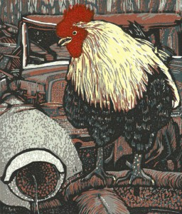 Junkyard Rooster by Tom Rudd and Margo McCafferty